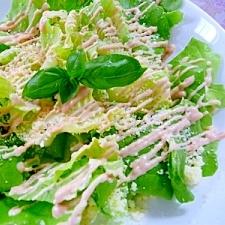 サラダ菜のチーズサラダ