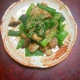 九条ネギと鶏モモとシイタケのオイスターソース炒め。