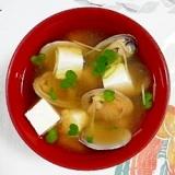 あさりとお豆腐のお味噌汁に貝割れも入れて