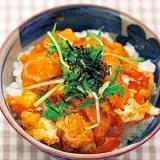 楽天マート☆親子丼の具セット