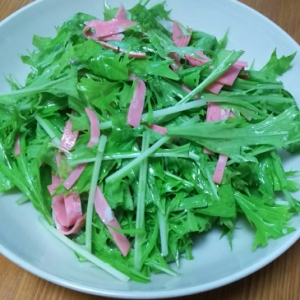 簡単☆和えるだけ♪ビアソーセージ&水菜のサラダ