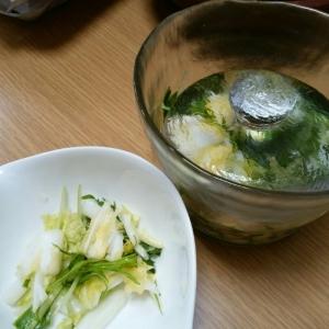 白菜の中華風浅漬け