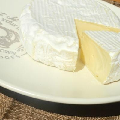 妊婦にチーズはNG?!選び方に気を付けましょう