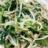 豚挽き肉と春菊とモヤシの味噌炒め