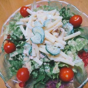 クリスマスにマカロニサラダと野菜サラダ