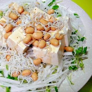豆腐入り蒸しサラダ