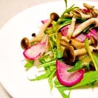 赤カブと水菜のサラダ
