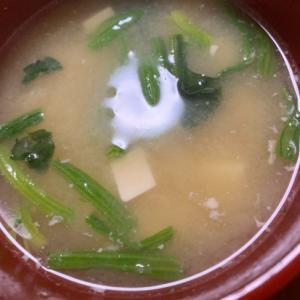 時短‼ほうれん草と豆腐の味噌汁♡