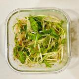 【混ぜるだけ】水菜ともやしのタイ風サラダ