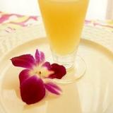 癒される ★ 梅酒のりんごジュース割り