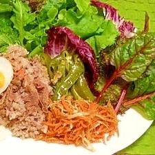 減塩☆ワンプレート・菜園風手巻き炊き込みご飯