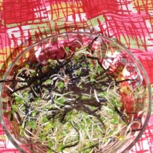 ブロッコリースプラウトの海苔わさサラダ