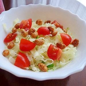おつまみで動植物たんぱく質摂っちゃおう!…なサラダ