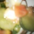 ナスきゅうりトマトの豆腐サラダ