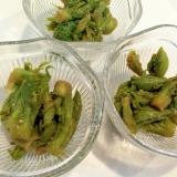 山菜の美味しい季節になりました☆タラの芽の胡麻和え