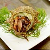 長崎産活サザエのお刺身(よか魚)