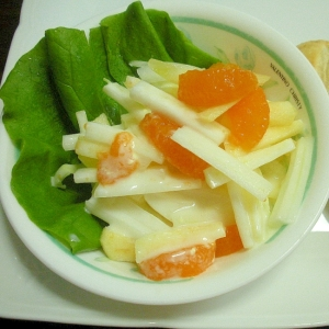 白菜とリンゴとみかんのマヨヨーグルトサラダ&Pパン