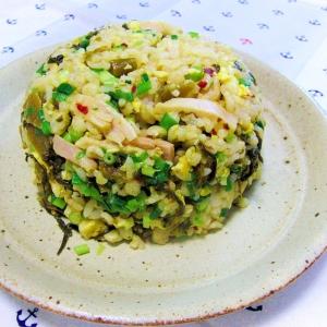鶏モモ肉の即席ハムと辛子高菜の炒飯