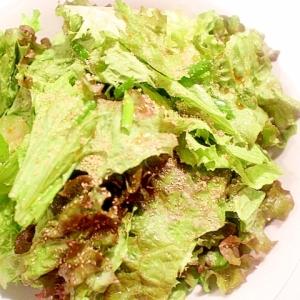 サニーレタスの消費に!沢山食べられるチョレギサラダ