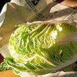 冷蔵庫いらず★冬の白菜の保存