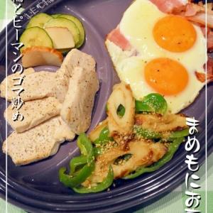 お弁当に簡単♪竹輪とピーマンのゴマ炒め