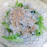 簡単 小松菜としらすの和え物 レシピ