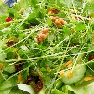 セロリの芽でサラダ