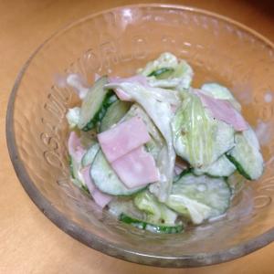 しゃきしゃき♪白菜サラダ