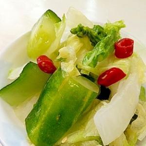 胡瓜と白菜の簡単浅漬け