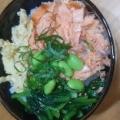 鮭の3色丼