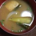 毎日のお味噌汁219杯目*秋茄子と玉葱、油揚げ