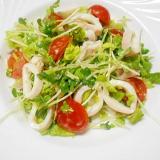 ★茹でやりいかと野菜のサラダ★