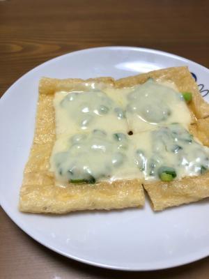 ネギゴマチーズの油揚げピザ