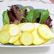 黄色いズッキーニとベビーリーフのサラダ