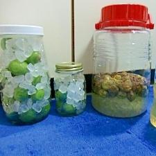 基本の梅シロップの作り方