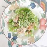 ほぐしサラダチキン、枝豆、貝割れ、胡桃のサラダ