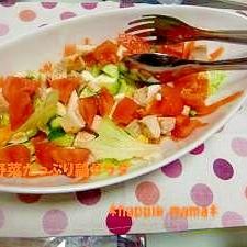 あっさりヘルシー★鶏のサラダ