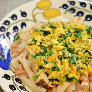 栄養のバランスの良い☆ツナと玉ねぎのオムレツ