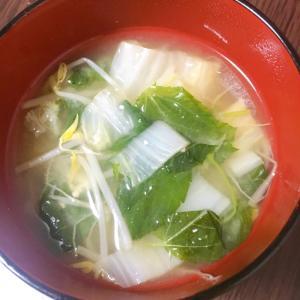 白菜とモロヘイヤともやしのお味噌汁