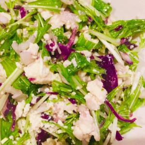 紫キャベツと水菜と豆腐のサラダ