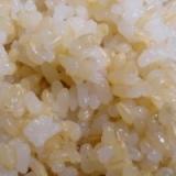 活力なべ☆圧力鍋で自家製発芽玄米の炊き方
