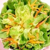 【簡単盛り付け】どんぶりに作る花咲くサラダ