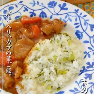 もち米入りでモチモチ♪菜っ葉ご飯