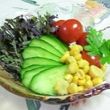 紫のからし菜のサラダ♪