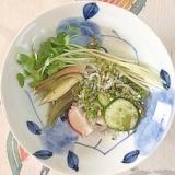 胡瓜、ラディッシュ、茗荷、貝割れ、しその実の和え物