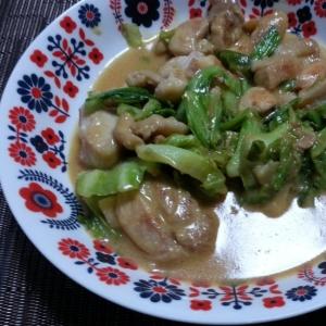 鶏もも肉とキャベツのマヨ味噌炒め