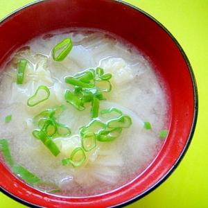 白菜と切り干し大根玉ねぎの味噌汁