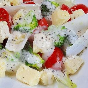 チーズ入り「チコリとブロッコリーのサラダ」