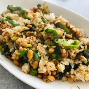 簡単節約!大量長ネギと納豆のスタミナ炒飯♬