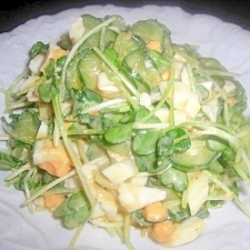 貝割れとゆで卵のサラダ